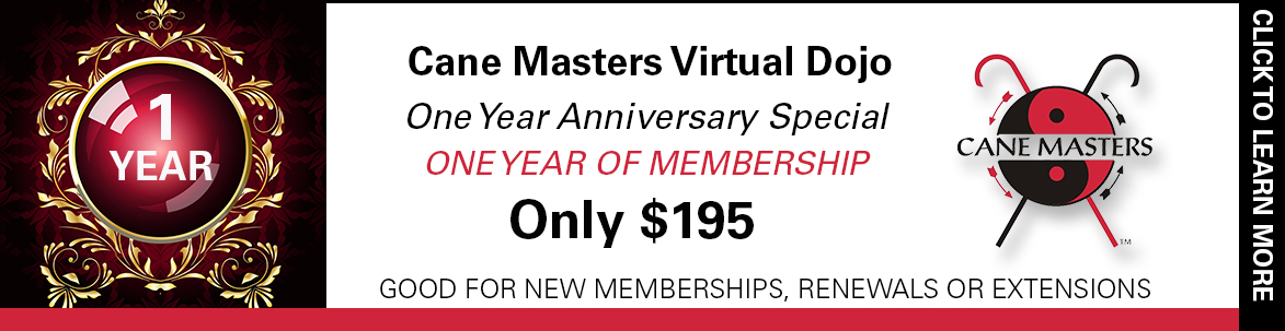 Virtual Dojo One Year Anniversary Special