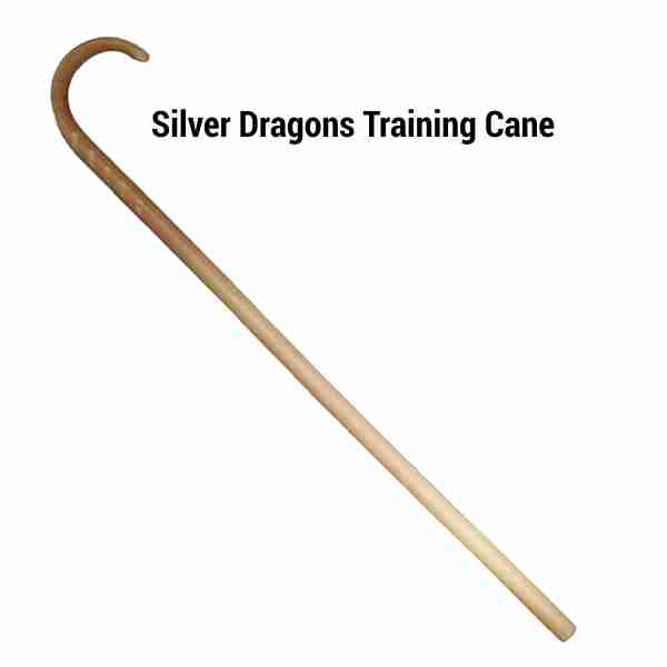 Silver Dragons Training Walking Cane