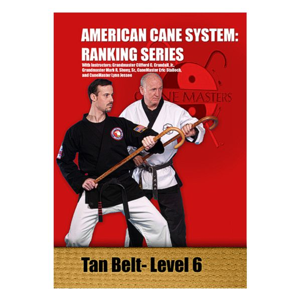 American Cane System Level 6