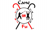 Cane FuSystem Cane Fu is a cane self defense and exercise system for seniors and those who use a cane.